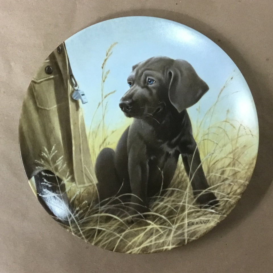 "Knowles Field Puppies Collection, 8th Issue titled ""Command Performance - The Weimaraner"""