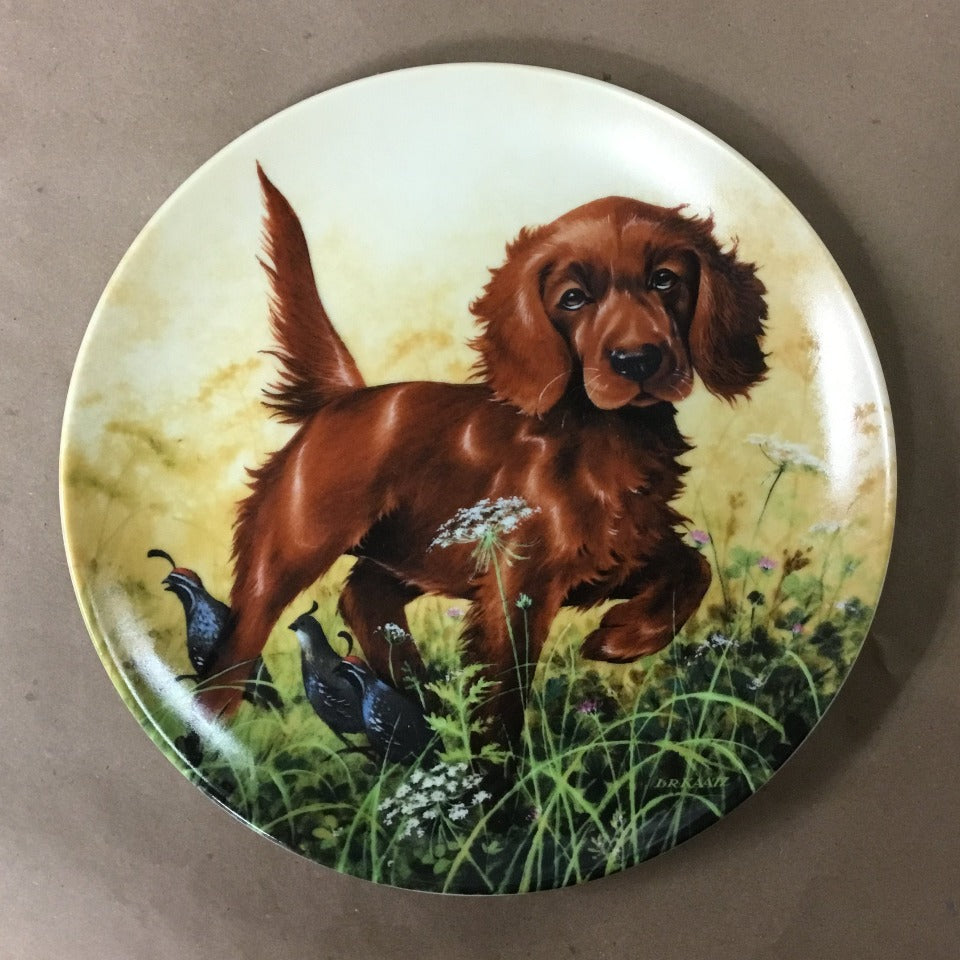 "Knowles Field Puppies Collection, 3rd Issue titled ""Missing the Point - The Irish Setter"""