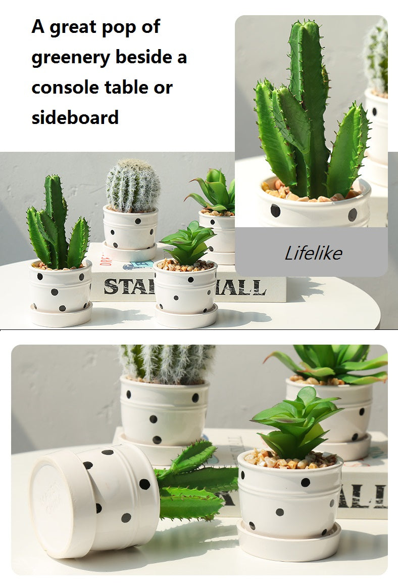 Artificial Potted Succulent Plants With Ceramic Pot/Vase - GIFT4U