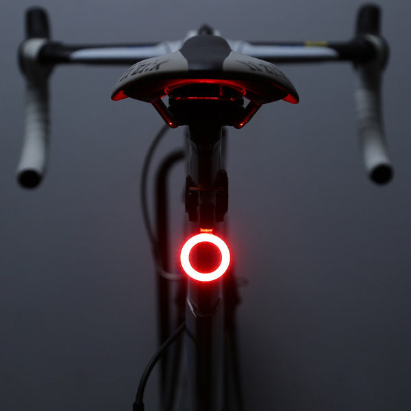 Bicycle/Bike LED Taillight, USB Rechargeable-Free Shipping