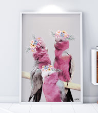 Load image into Gallery viewer, Family of Galahs Print