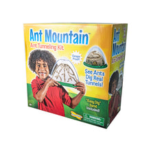 Load image into Gallery viewer, Ant Mountain