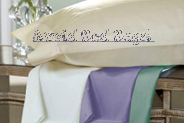 How to Avoid Bed Bugs