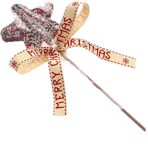 P&T Chocolate Lolly with Multi Sprinkles