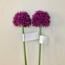 Load image into Gallery viewer, Single plastic mini Allium stem