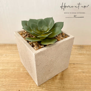 Artificial succulent in concrete pot
