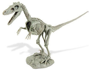 Uncle Milton Dr. Steve Hunters Dino Dig Excavation Kit Velociraptor-Scientific Educational Toy