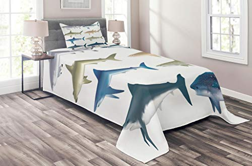 Lunarable Shark Coverlet Set Twin Size, Types of Angel Cow Hammerhead Sand Sharks Mammals Species Natural Nautical Graphic, 2 Piece Decorative Quilted Bedspread Set with 1 Pillow Sham, Blue Grey