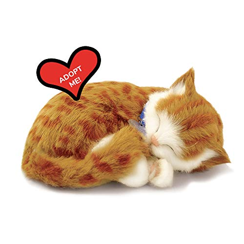 Original Petzzz Orange Tabby, Realistic, Lifelike Stuffed Interactive Pet Toy, Companion Pet Cat with 100% Handcrafted Synthetic Fur – Perfect Petzzz