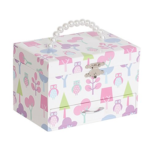 Mele & Co. Molly Girl's Musical Ballerina Jewelry Box with Owl Pattern