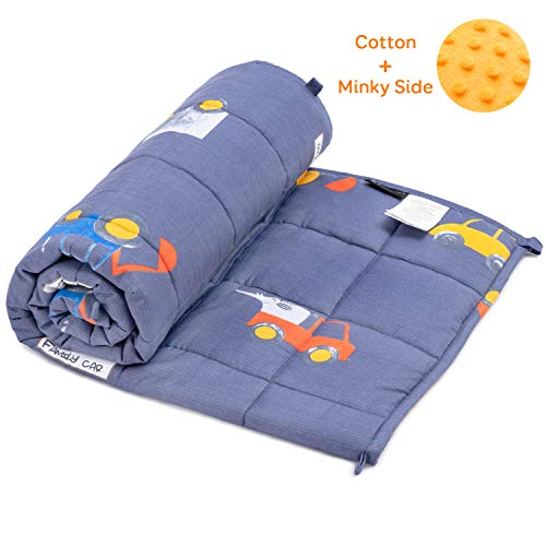 BUZIO Weighted Blanket 5 lbs for Kids, Ultra Cozy Minky Fleece and Cotton Sided with Cartoon Patterns, Reversible Heavy Blanket Great for Calming and Sleeping, 36x48 inches, Blue Car World