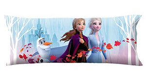 Disney Frozen 2 Body Pillow Cover