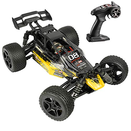 Hosim Radio Remote Control Car High Speed Rc Cars 1:16 Scale 4WD 36+ km/h Off Road Buggy Monster Truck, All Terrain Waterproof Electric Drift Toy Trucks for Kids and Adults(Yellow)