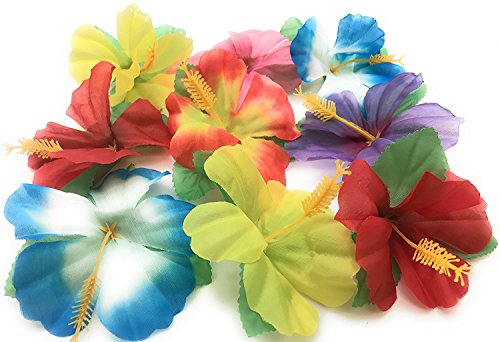 Oojami Hibiscus Flowers for Tabletop Decoration ( Pack of 72)