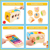 Toy To Enjoy Hammering & Pounding Wooden Toy - Shape Sorter, Xylophone & Montessori Sorting Toys for Children Aged 1 to 10 - Educational Learning Toys for Girls & Boys - Improves Fine Motor Skills