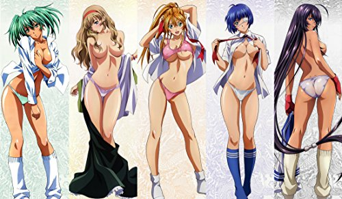 MT Ikki Tousen / Battle Vixens 18+ Custom Play MAT Anime PLAYMAT #163