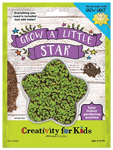 Creativity for Kids GROW a Little Star - Star Shaped Mini Grow Kit for Kids