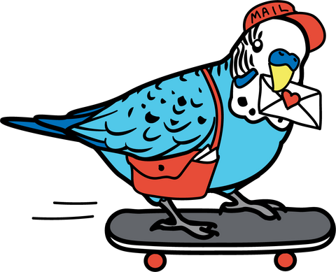 Mail budgie on a skatboard