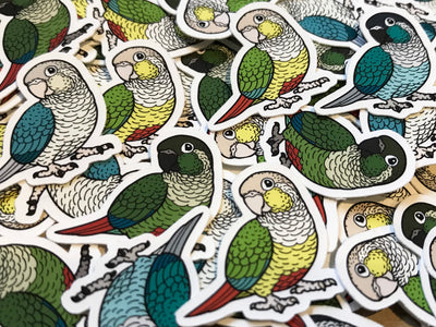 Mixed Green-Cheeked Conure Mini Sticker Pack (20 pack) - Waterproof Vinyl