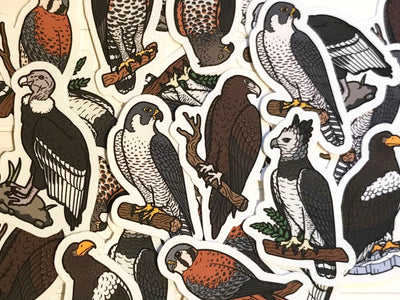 Birds of Prey Mini Sticker Pack (20 pack) - Waterproof Vinyl