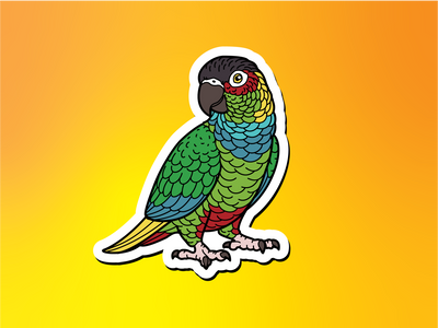 Blue-throated Conure Magnet