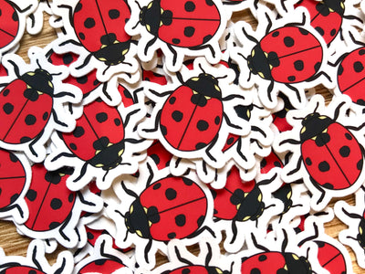 Lady Beetle Mini Sticker Pack (20 pack) - Waterproof Vinyl