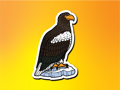 Steller's Sea Eagle Magnet