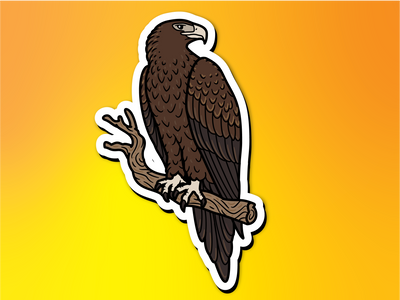 Wedge-tailed Eagle Magnet