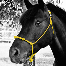 Load image into Gallery viewer, Knotted Noseband Do Or Do Knot® Rope Halter