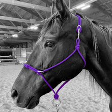 Load image into Gallery viewer, Knotted Sidepull Rope Halter
