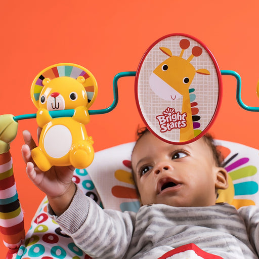 Bright Starts Bouncer Playful Pinwheels