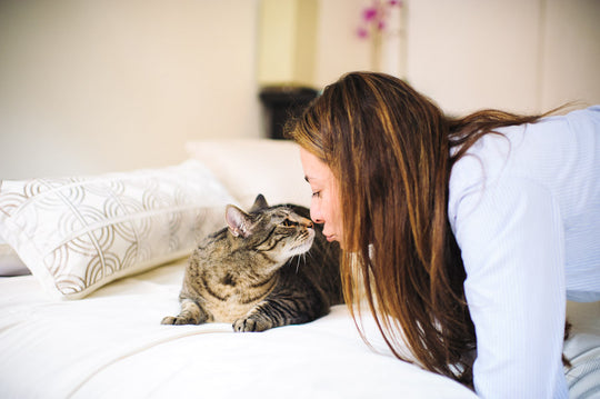 Woman and cat in nice bedroom nose to nose.
