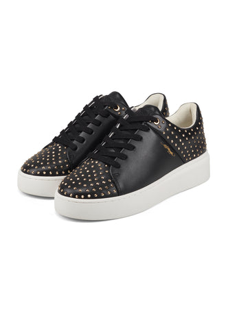 STUD-ED LOW TOP-BLACK/GOLD