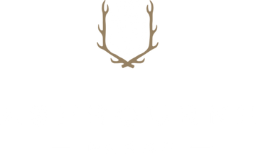 Ashbourne Farms | Mushrooms