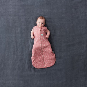 Load image into Gallery viewer, ergoPouch Quill Cocoon Swaddle Bag 2.5 TOG