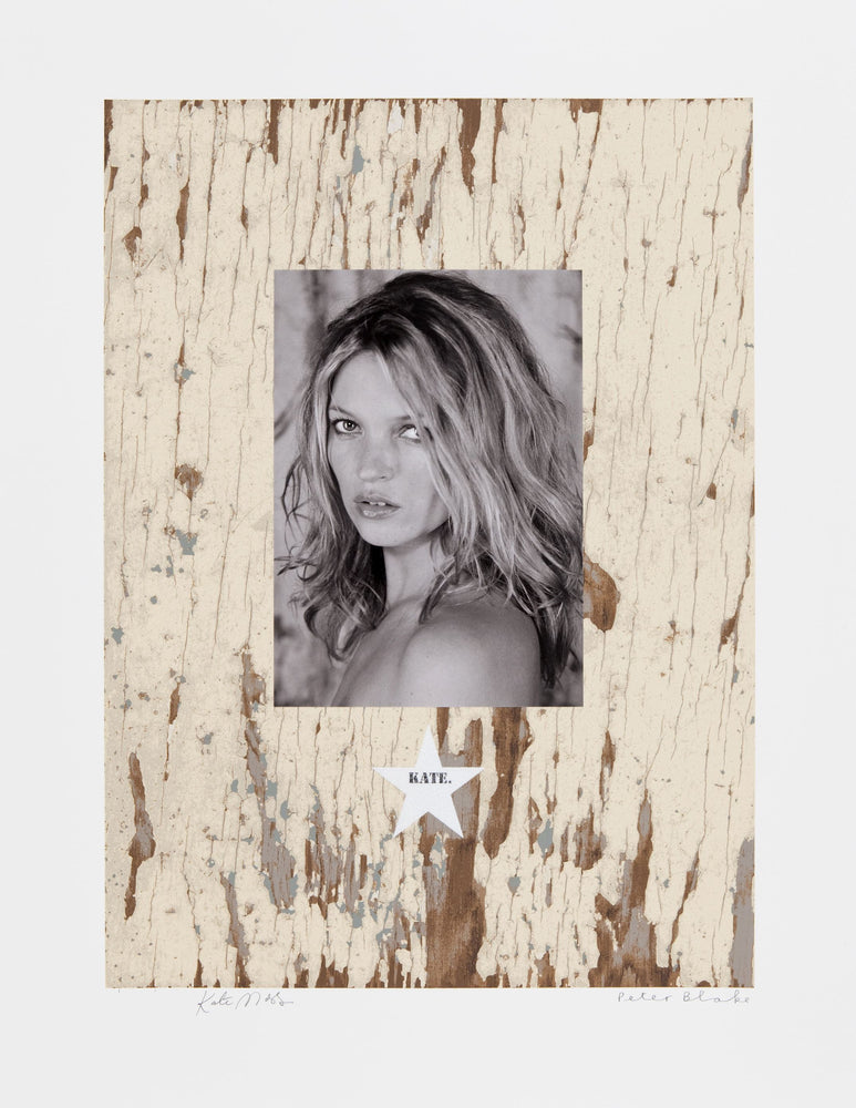 Kate Moss 2010 artwork by Peter Blake