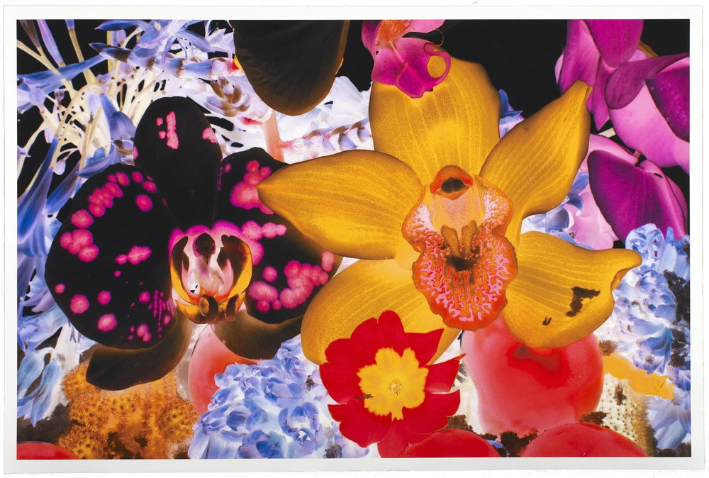 At The Far Edges of the Universe 05 artwork by Marc Quinn