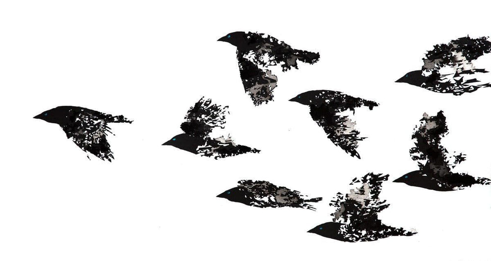 Jackdaws Black and White artwork by Rob Wass