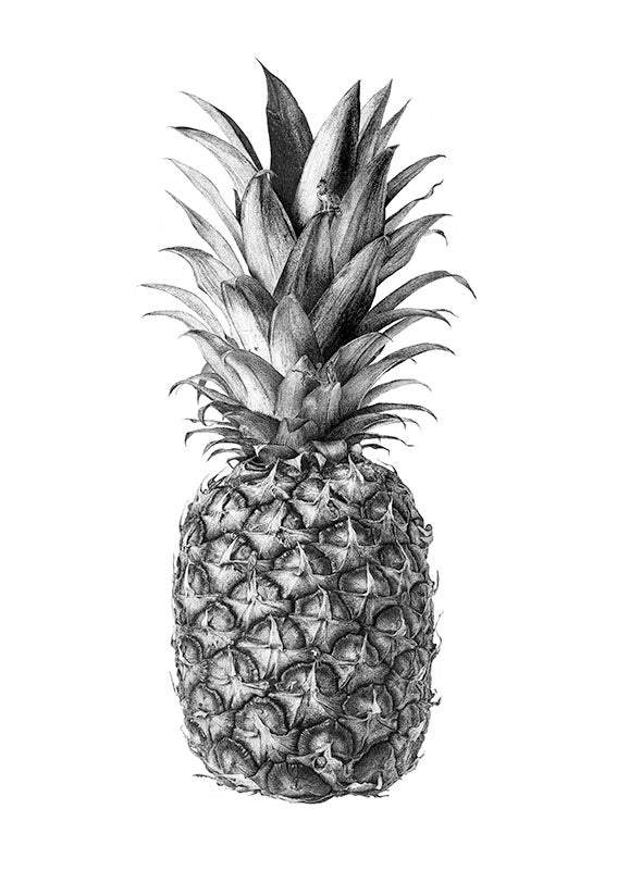 Rainforest Rewild Pineapple art print by CJP | Enter Gallery