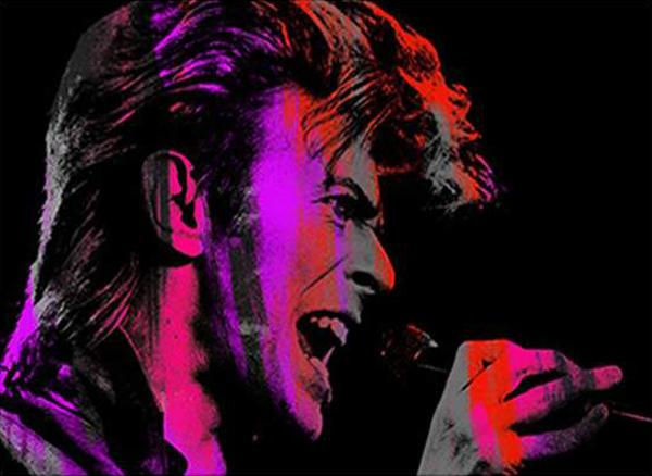 Singing Bowie Pink, Large Canvas