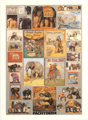 P is for Pachyderm artwork by Peter Blake