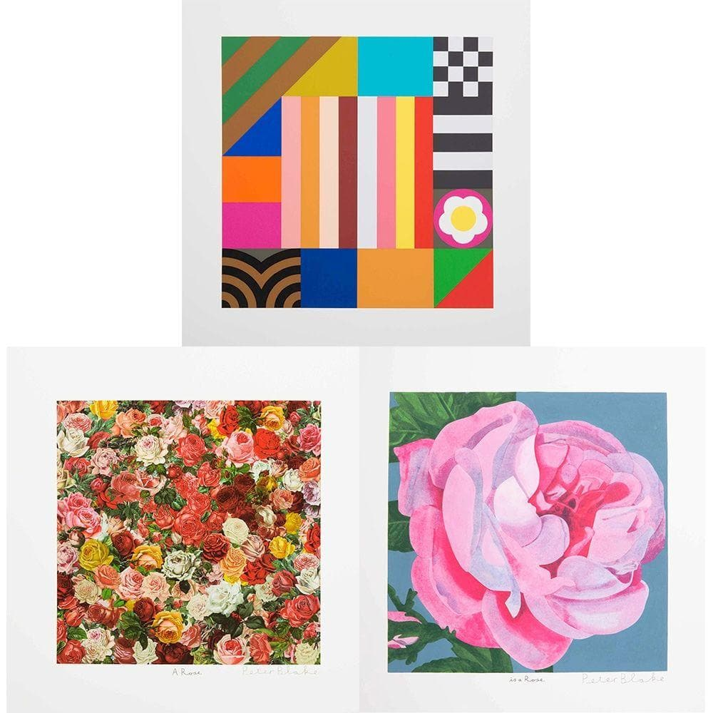 A Rose, Is a Rose, Is a Rose artwork by Peter Blake