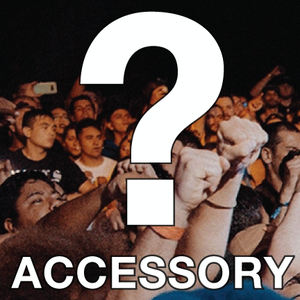 ACCESSORY *2 items