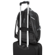 "Targus 11.6-15.6"" DrifterTrek™ Backpack"