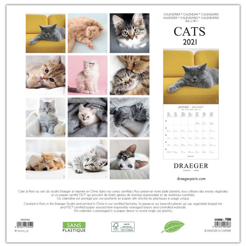 Large wall calendar 29x29 cm Cats 2021