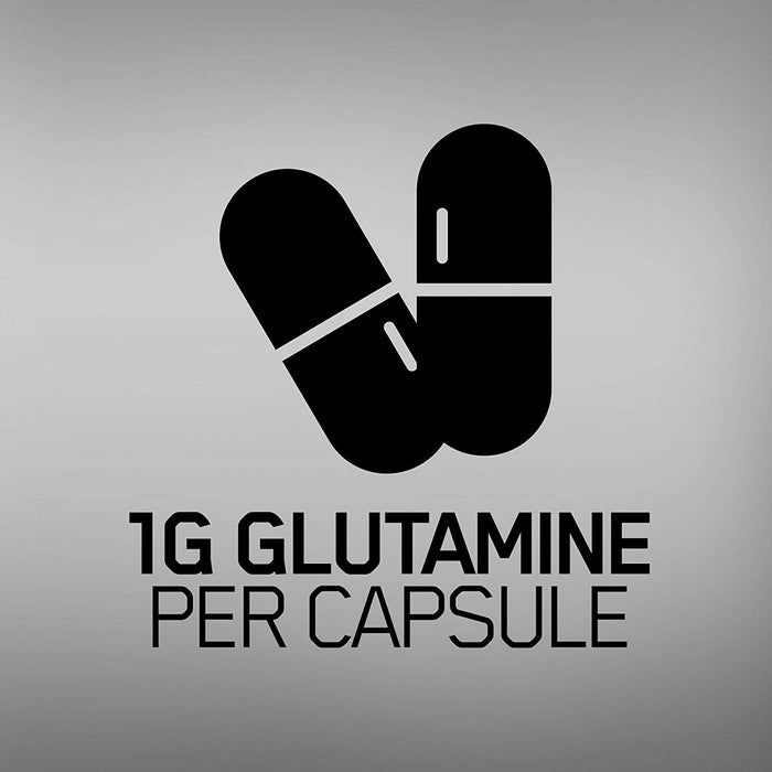 OPTIMUM NUTRITION L-Glutamine Muscle Recovery Capsules, 1000mg, 240 Count (Packa