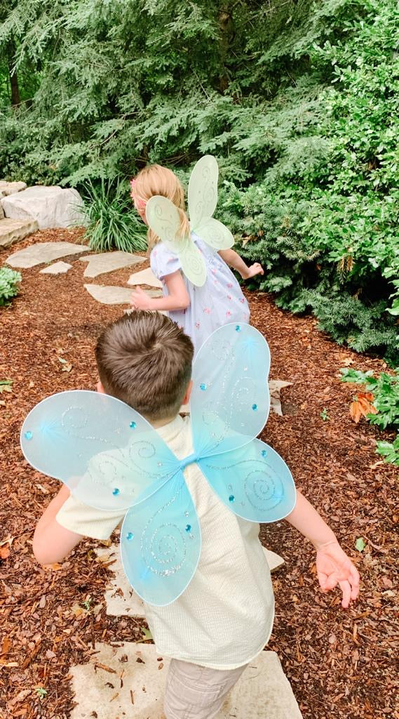 fairy chase at a fairy garden birthday party
