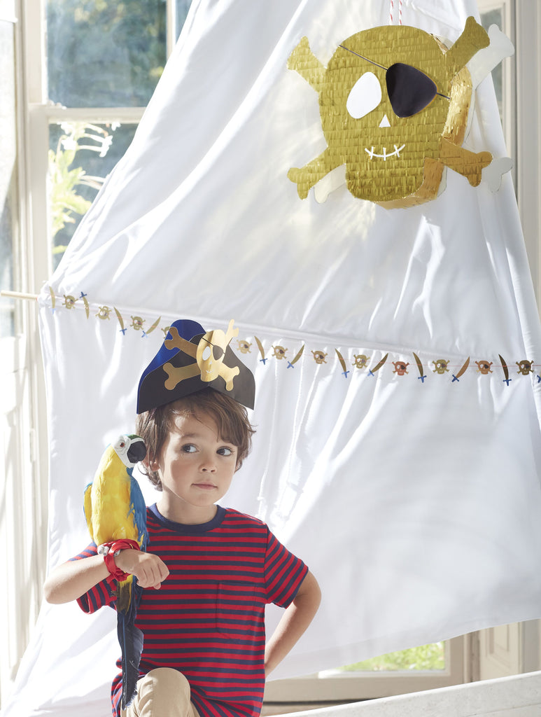 Pirate party pinata pirate themed birthday party box