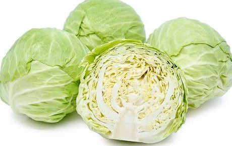 Cabbage, Green (head)