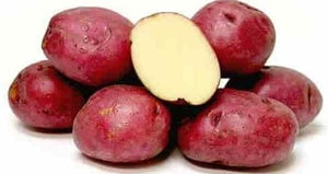 "Potatoes, Red ""B"" (2lb)"